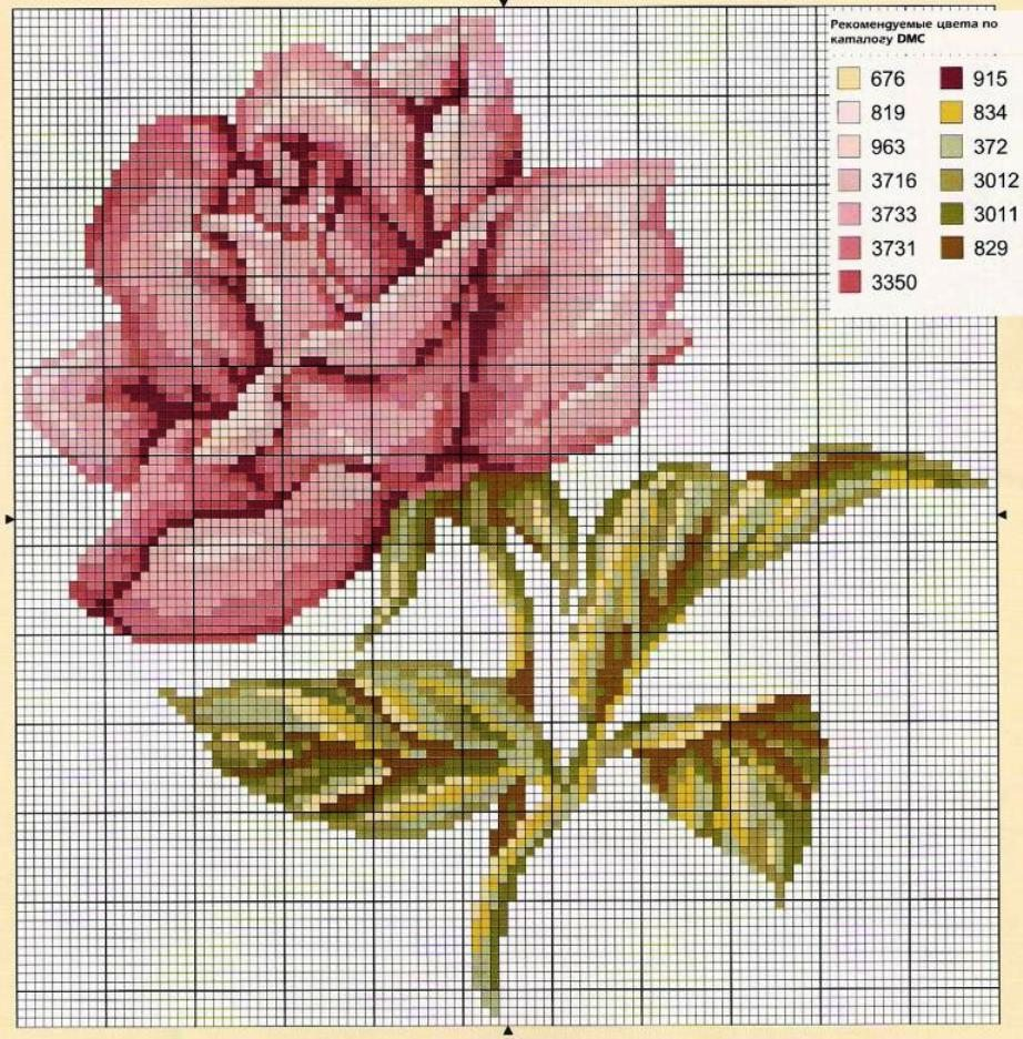 schemi cross stich roses (1)