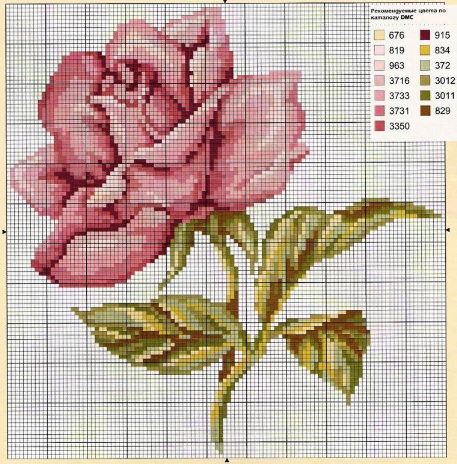 schemi cross stich roses (1)