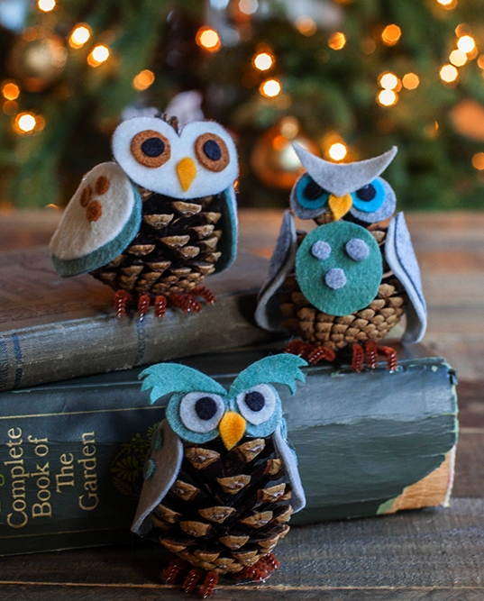 Questi simpatici ornamenti realizzati con semplici pigne, sono facili ed economici da realizzare, basta un po di feltro, colla e qualche pigna raccolta durante le passeggiate estive.