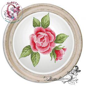 schema rosa di maggio a punto croce