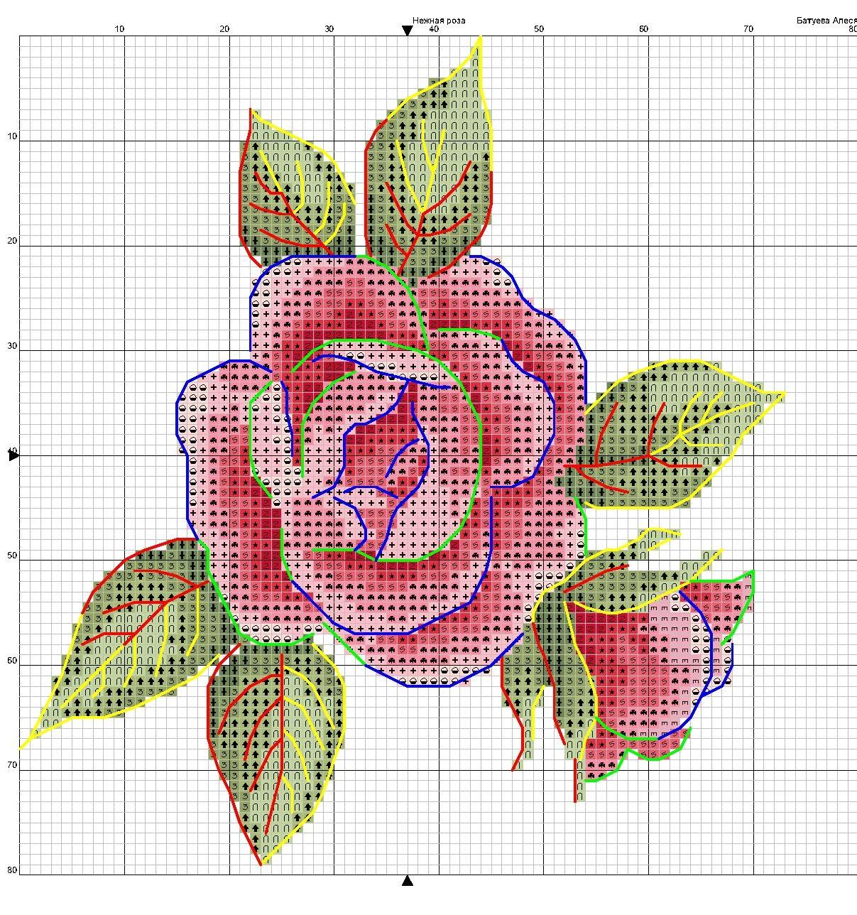 schema rosa di maggio a punto croce (3)